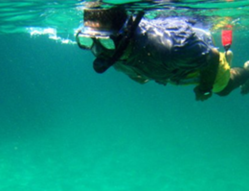 What is Snorkeling?